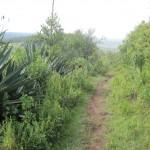 Beetje de weg kwijt bij  Lake Nakuru