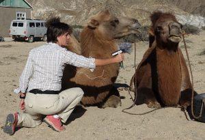 Saar interviewt haar kameel
