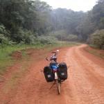 In Kakamega Forest